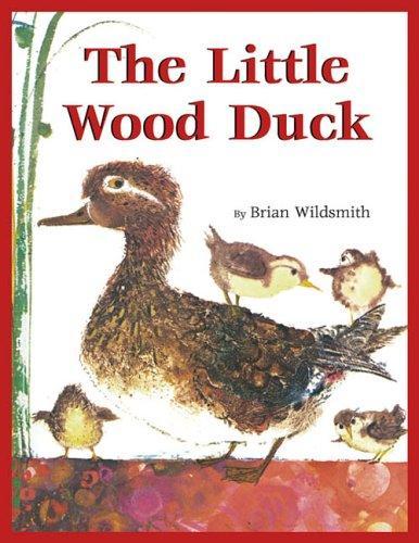 The Little Wood Duck