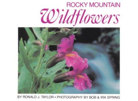 Download Rocky Mountain wildflowers