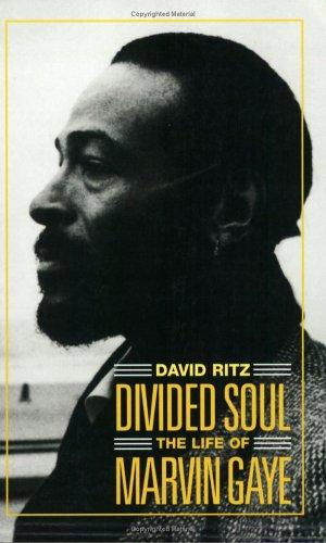 Download Divided Soul