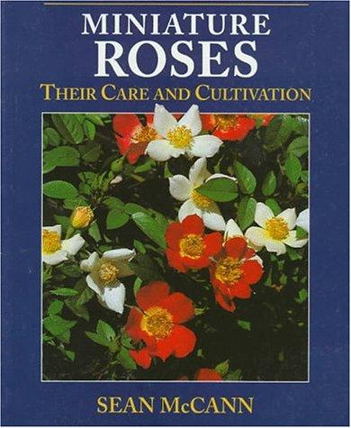 Download Miniature Roses