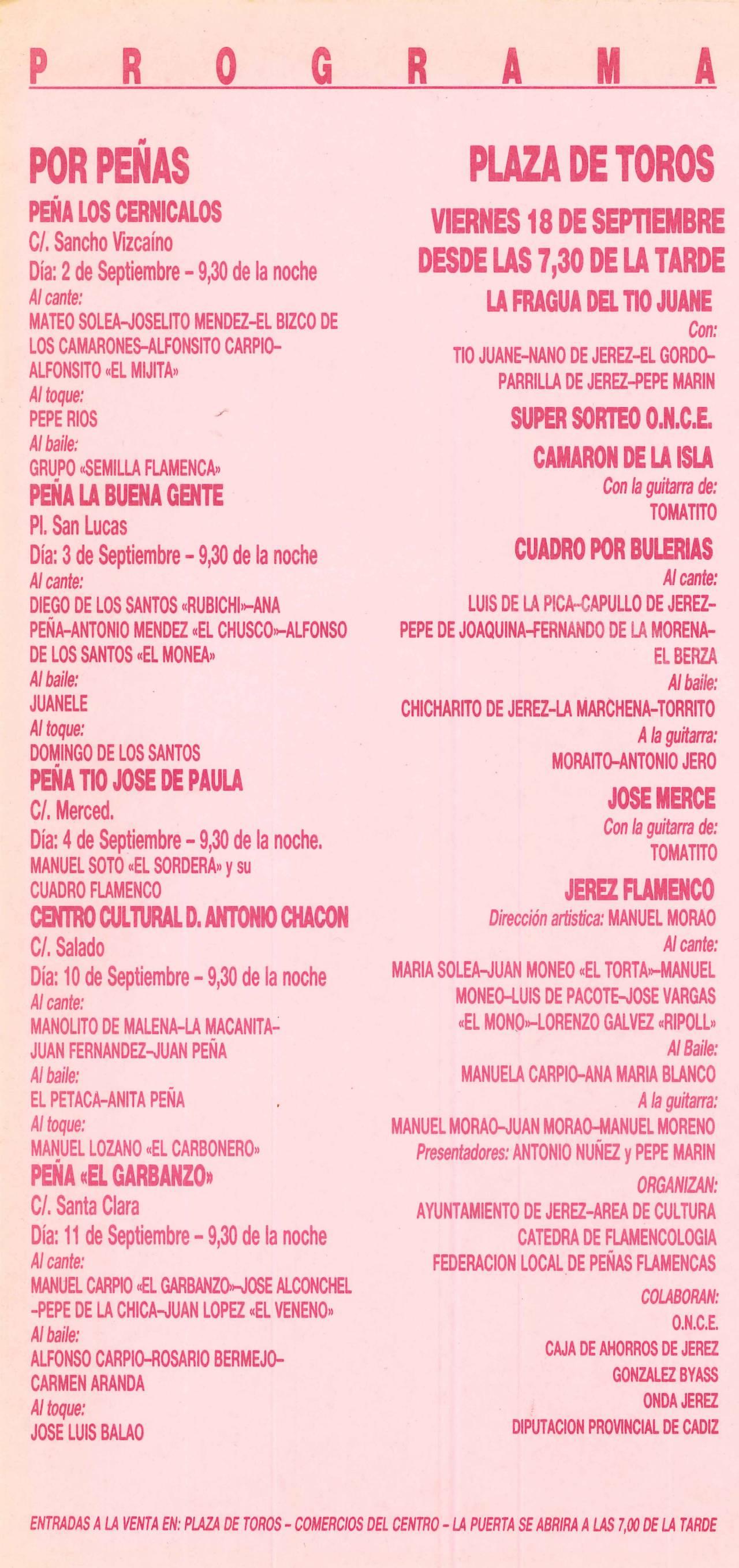 XX FIESTA DE LA BULERIA-PROGRAMA