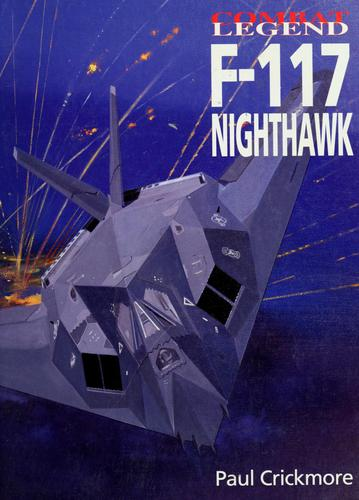 F-117 Nighthawk by Paul Crickmore
