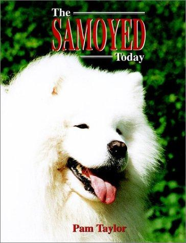The Samoyed today by Pam Taylor