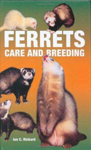 Ferrets Care and Breeding by Ian C Richard